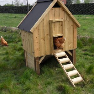 chicken coop with extra shelter