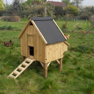 A small free range chicken house with three chickens in the background